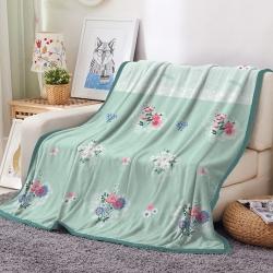 空调毯  夏被夏凉休闲毯 车用旅行法莱绒毛毯 枕套床单盖毯