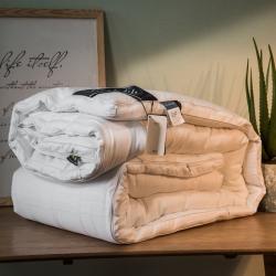 2019新款全棉提花二合一冬被 加厚保暖子母被芯白色粉色