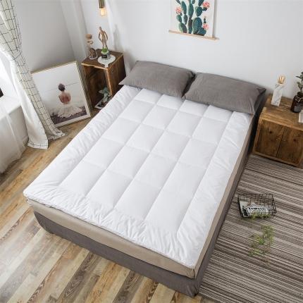 傲蕾良品全尺寸高级酒店同款宿舍大床床垫床褥垫被慢回弹垫被
