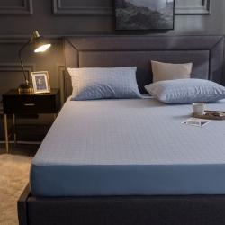 麗芙秋冬新款全棉提花毛巾布防水單床笠三件套A類 格子中藍