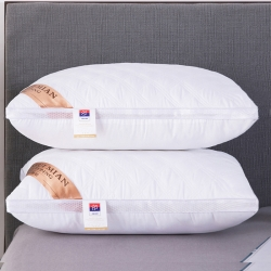 興絲露枕芯 網邊絎縫立體枕  雙邊枕頭 網銷贈品