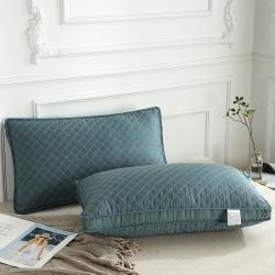 (总)赛格时代家居 枕芯 柔赛丝舒梦枕 枕头