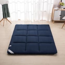 新品學生榻榻米四季親膚床墊宿舍上下鋪床褥子