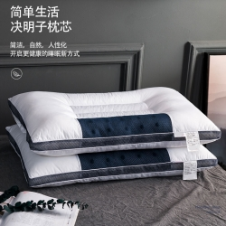 夏冬 全棉磁療決明子立體枕芯 保健枕頭