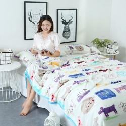 加厚 云貂絨毛毯 雙面絨床單 法萊絨毛毯 可配枕套 珊瑚絨毯
