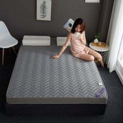 (總)艾尚 2019新款針織記憶海綿立體床墊