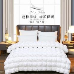 日久全棉羽絨被鵝絨被子保暖加厚冬被子被芯可訂做各種尺寸白色