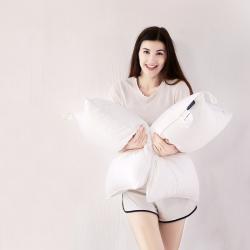 沃蘭國際 全棉防羽布酒店羽絲絨枕頭儀征棉簡約高端成人護頸枕芯