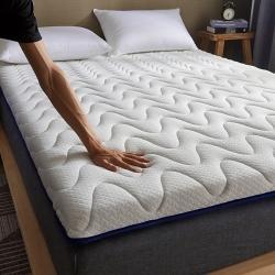 (总)迪乐妮新款单边针织乳胶抗压床垫5-10厘米厚白兰波纹款