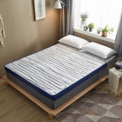 (總)迪樂妮 新款立體乳膠記憶棉床墊5-10厘米厚 花海
