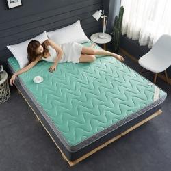 (總)迪樂妮 新款立體乳膠記憶棉床墊5-10厘米厚 綠波紋