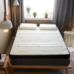 (總)迪樂妮 新款立體乳膠記憶棉床墊5-10厘米厚 竹韻