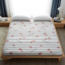 (總)迪樂妮 新款單邊針織乳膠抗壓床墊5-10厘米厚 草莓