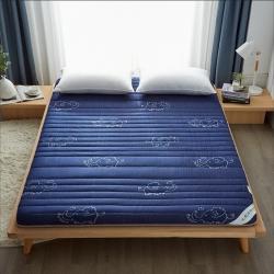 (總)迪樂妮新款單邊針織乳膠抗壓床墊5-10厘米厚藍色小飛象