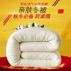 军情新疆棉花被 2020新款新疆棉花被被芯冬被 风格4