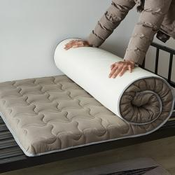 (總)迪樂妮 2020新款學生床水洗棉加厚5厘米款床墊