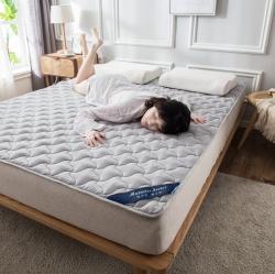 2020全棉抗菌防螨夾棉英威達纖維床護墊席夢思保護墊