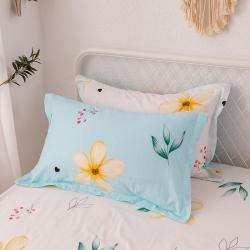 (總)微廉2020新款12868多規格枕套48*74cm/對