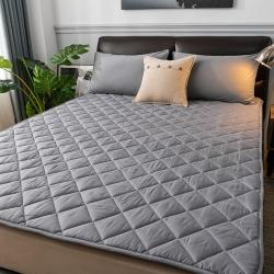 2021新品 亲肤磨毛床垫可机洗床褥子特价床护垫席梦思保护垫
