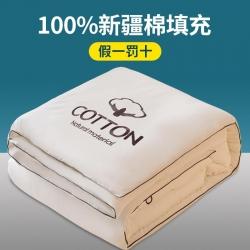 (总)云棉坊 2020新款百分百新疆棉花冬被