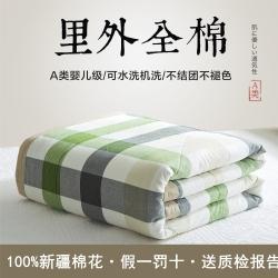 [送质检报告]可水洗百分百里外全棉棉花被空调被纯棉夏被初见