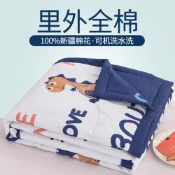(总)2021新款奥裕全棉棉花夏被纯棉空调被夏凉被