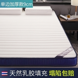 乳胶硬质棉床垫单人双人垫被褥学生宿舍 9厘米 立体直条白