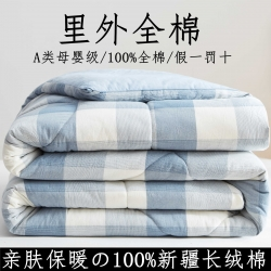 暖阳 2021新款色织全棉水洗棉冬被春秋被夏被棉花被 秋月