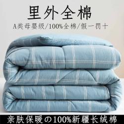 暖阳 2021新款色织全棉水洗棉冬被春秋被夏被棉花被 秋田