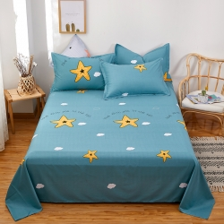 (总)鑫程家纺128×68全棉印花单床单    全部花色