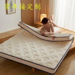 大豆纤维羊羔绒床垫软垫家用垫褥冬季米加厚租房专用保暖冬天垫子
