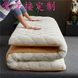 (总)祁恋婷床垫 2021新款2021新款羊羔绒床垫