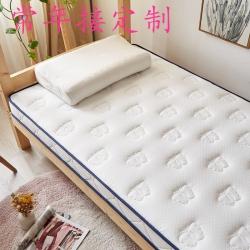 乳胶床垫软垫家用榻榻米租房专用褥子学生宿舍单人海绵地铺睡垫子