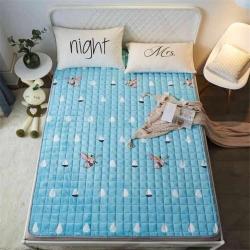可定做水晶絨床墊防滑保暖床褥床護墊機洗軟墊薄墊榻榻米小飛象