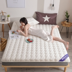 (总)布卢姆床垫 2019全棉防水英威达抗菌防螨床垫