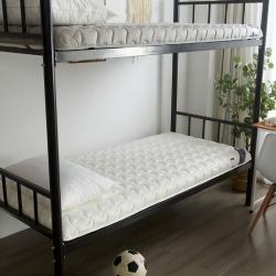 (总)布卢姆床垫 2019美国英威达全棉抗菌防螨纯色防水床垫