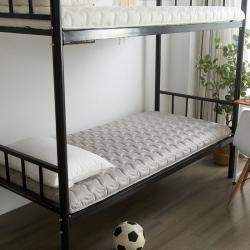 布卢姆床垫 美国英威达全棉抗菌防螨纯色防水床垫灰色厚度5cm