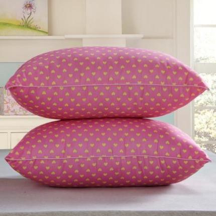 (总)兴煌枕业 枕芯 精品印花真空枕新品
