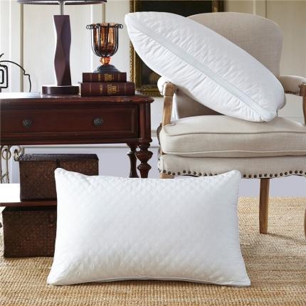 兴煌枕业 全棉绗缝立体羽丝绒枕 时尚风情