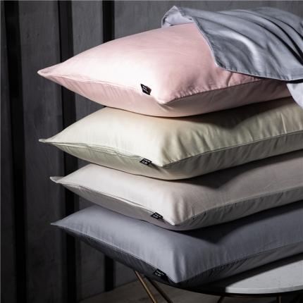(总)网客 2019新款玻尿酸美颜枕套一对装