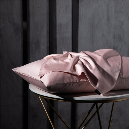 网客2019新款玻尿酸美颜枕套一对装H.a豆沙48×74cm