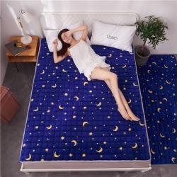 (總)滿圓紅 2019爆款法萊絨薄床墊床褥可水洗可折疊