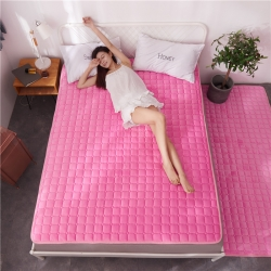滿圓紅 2019爆款法萊絨薄床墊床褥可水洗可折疊 粉色