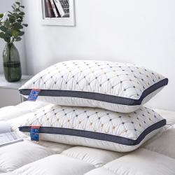 仁宇枕業 2019新款枕芯特價磨毛藍網絎繡小方格枕頭