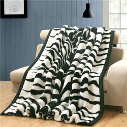 宜派家纺 2019新款拉舍尔毛毯 双层加厚毛毯 法莱绒毛毯