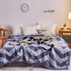 好藝佳 2019新款拉舍爾毛毯學生毯加厚雙層4斤–8斤皇冠