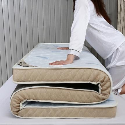 棕康垫业 2019新款针织乳胶床垫 羽毛蓝