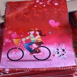 彩印覆膜防水袋网销袋套单车美女快递袋厂家直销批发零售
