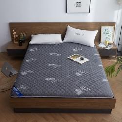 (总)天艺床垫 2019新款乳胶减压款床垫(厚度7公分)