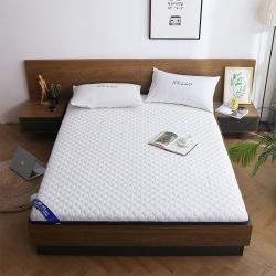 天艺床垫 2019新款乳胶减压款床垫(厚度7公分)减压款 白